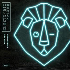 Jonas Blue — I Wanna Dance   WRadio