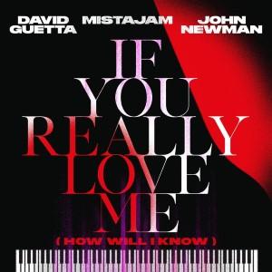 David Guetta, Mistajam and John Newman — If You Really Love Me | WRadio